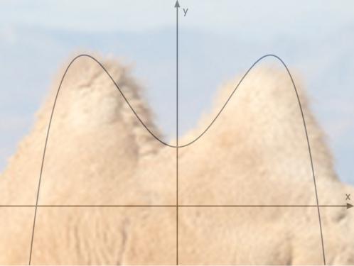 Kamelhöckerkurven